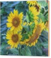 Flower #40 Wood Print