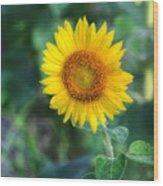 Flower #43 Wood Print