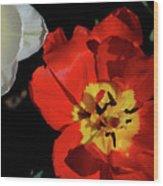 Flower 55 Wood Print