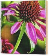 Flower 70f Wood Print