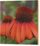 Flowers 729 Wood Print