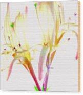 Flower 9315 Wood Print