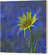 Flower And Flax Wood Print