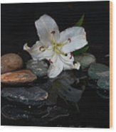 Flower And Stone Wood Print