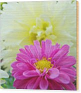 Flower Art Print White Pink Dahlia Floral Canvas Baslee Troutman Wood Print