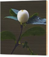 Flower Ball Wood Print