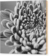 Flower Black And White Wood Print