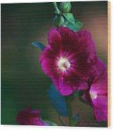 Flower Bloom Wood Print