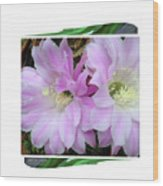 Flower Blossom Pink Wood Print