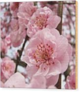 Flower Blossoms Art Spring Trees Pink Blossom Baslee Troutman Wood Print