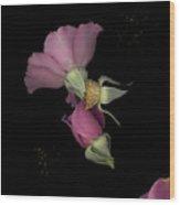 Flower Box Purple Cut Wood Print