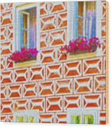 Flower Boxes In Slavonice Wood Print