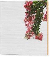 Flower Branch Wood Print