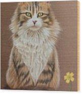 Flower Cat Wood Print