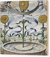 Flower Clock, 1643 Wood Print