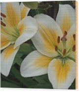 Flower Close Up 2 Wood Print