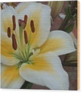 Flower Close Up 3 Wood Print