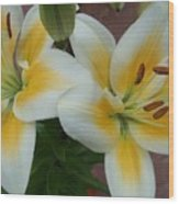 Flower Close Up 5 Wood Print