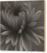 Flower Close Up Wood Print