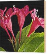 Flower Composite Trio Horizontal Wood Print