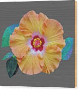 Flower Delight Wood Print