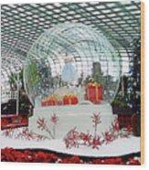 Flower Dome 2 Wood Print