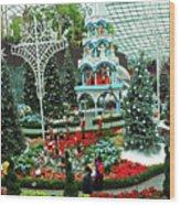 Flower Dome 29 Wood Print