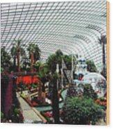 Flower Dome 3 Wood Print