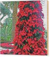 Flower Dome 46 Wood Print