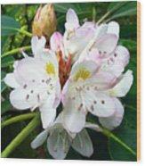 Flower Du Jour Wood Print
