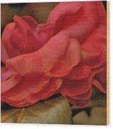 Flower Dusting Wood Print