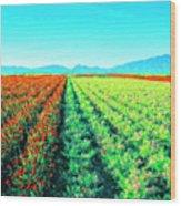 Flower Farm 1 Wood Print