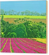 Flower Farm And Hills Wood Print