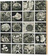 Flower Favorites Bw Wood Print