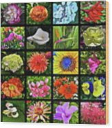 Flower Favorites Wood Print
