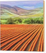Flower Field Near Los Osos Wood Print