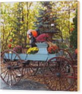 Flower Filled Wagon Wood Print