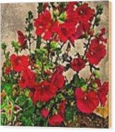 Flower Garden 11 Wood Print
