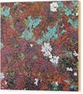 Flower Garden In The Rust Wood Print