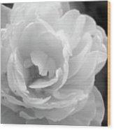Flower Ghost Wood Print