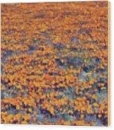Flower Hill Wood Print