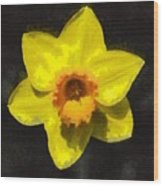 Flower - Id 16235-220300-0389 Wood Print