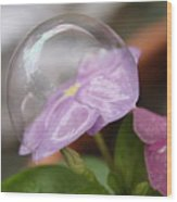 Flower In A Bubble Wood Print