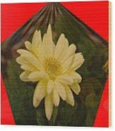Flower In A Pentagon  Wood Print