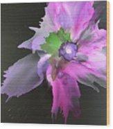 Flower In Black Wood Print