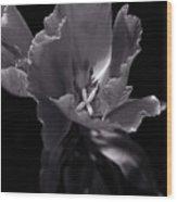 Flower In Monotone Wood Print