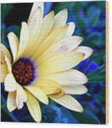 Flower In The Mist Wood Print