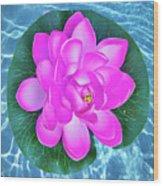 Flower In The Pool Wood Print