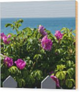 Flower Island View Wood Print