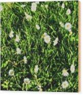 Flower Kissed Fields Wood Print